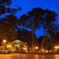 Одесса вечер в городском парке :: Денис Масленников