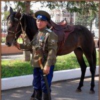 Казаку конь — отец родной и товарищ дорогой :: Андрей Заломленков