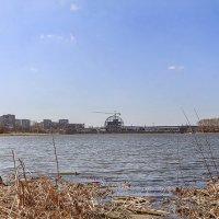 панорама города :: Lidiya Gaskarova
