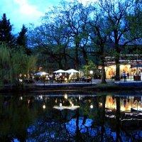 Кафе под открытым небом. Городской парк Саратов :: Диана Бурлаченко