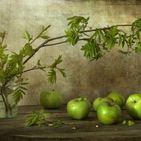 зеленая весна :: Марина Торопова