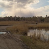 В парке :: Алексей Масалов