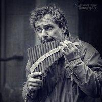 Уличный музыкант :: Анна Булгакова