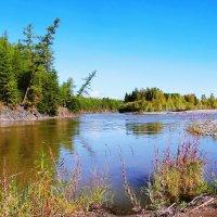 Река Буюнда. Старое русло :: Iverinka .