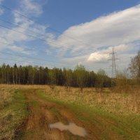 Через четверть часа погода испортилась :: Андрей Лукьянов