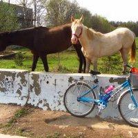 Они вспомнили моего железного коня :: Андрей Лукьянов