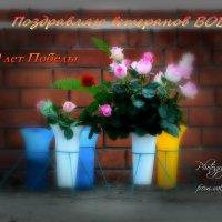 Поздравляю ветеранов ВОВ :: Валерий Лазарев