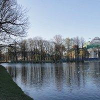 Таврический сад :: navalon M