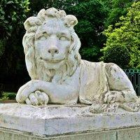 лев с улыбкой джоконды :: Александр Корчемный