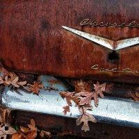 Осень жизни... :: Roman Mordashev