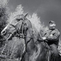 Конный полицейский :: Андрей Чернышов