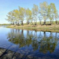 Про тени и отражения в воде :: galina tihonova