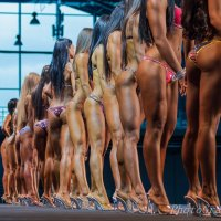 Grand Prix Fitness House PRO 2014.Bikini fitness.СПб :: Андрей Липатов