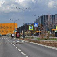 Наш новый выставочный центр :: Наталья Левина