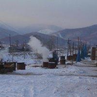 Как коптится омуль :: василиса косовская