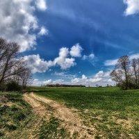 Весеннее поле :: Владимир Самсонов