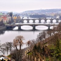 Знаменитый вид на пражские мосты. Февральско-пасмурный вариант :: Денис Кораблёв