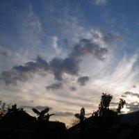 Коршун в небе :: Татьяна Пальчикова
