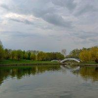 В парке на пруду :: Анатолий Цыганок