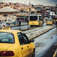 sarı :: Selman Şentürk