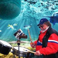 Подводный барабанщик :: Валерий Кабаков