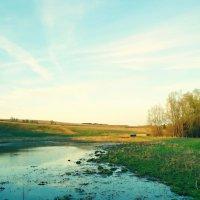 Небольшое болото :: Дима Вахрушев