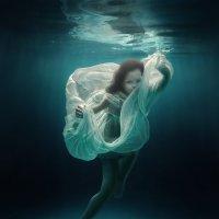 Sea flower :: Дмитрий Лаудин