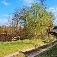 Деревня  Столяры. :: Валера39 Василевский.