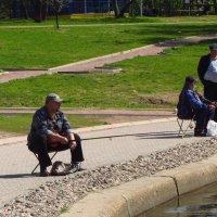 IMG_8503 - Как же ловить дальше? :: Андрей Лукьянов