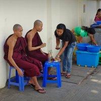 Монахов в Бирме уважают... :: Михаил Рогожин