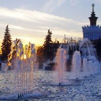 На закате. :: Ирина Нафаня