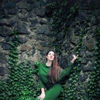 У замковой стены :: Андрей Акатьев