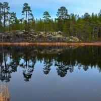 Безымянное озеро. :: kolin