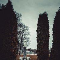 памятник матір божої :: Тарас Семигаленко