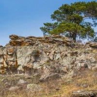 На вершине скалы :: Любовь Потеряхина