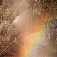 Кусочек радуги в ... фонтане :) :: Андрей