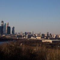 москва-сити :: Александра Руднева
