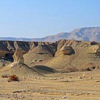Пустынное безмолвие.. :: Виктор Льготин