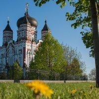 Парк Феофания и Собор Святого Пантелеймона :: Александр тарасенко