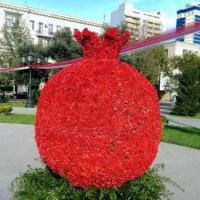 гранат из цветов :: Шамиль Аликулиев
