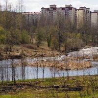 Городской пейзаж. :: Лазарева Оксана
