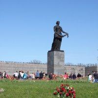 Пискаревское кладбище. :: Маера Урусова