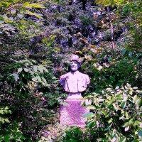 Забытый садовод :: Милла Корн