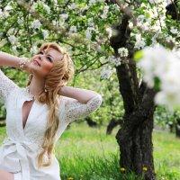 яблоневый сад :: Елена Фотостудия ПаФОС