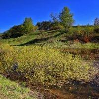Весенний... :: Svetlana Sneg