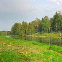 Зеленый май :: Павлова Татьяна Павлова