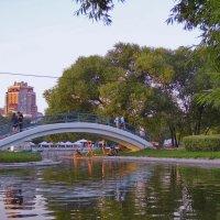 Летний вечер в парке :: Денис Масленников