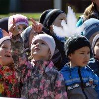 смотри, а там живые голуби! :: Евгений Фролов