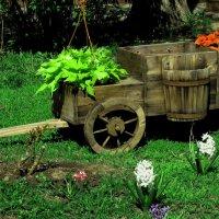 ...и букет цветов в придачу ! :: Николай Дони