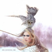 Зима :: Виталий Зверев